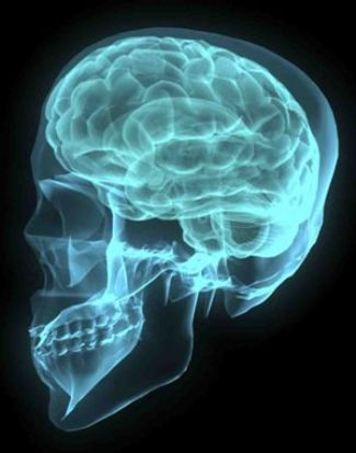 Neuropsychological information: Traumatic brain injury / Open head injuries